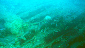 photo of wooden ship remains at site AB10-AC