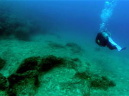photo of RPMNF diver conducting research for Albania 2013 Field Season