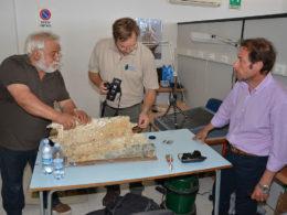 photo of examination of Egadi 5 ram