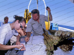 photo of Egadi 2 Ram being measured and examined on ship deck